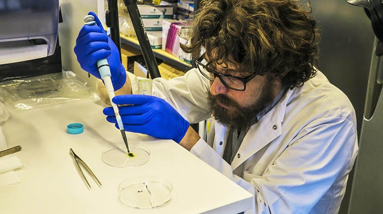 Científico chileno crea piel fotosintética que regenera tejidos