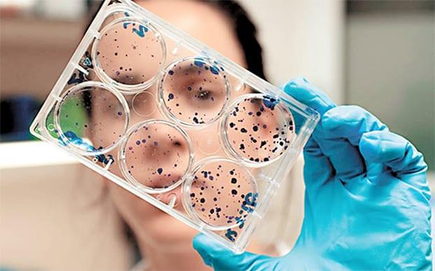 Sube a 10 los niños muertos por adenovirus en EU [Internacional] – 01/11/2018
